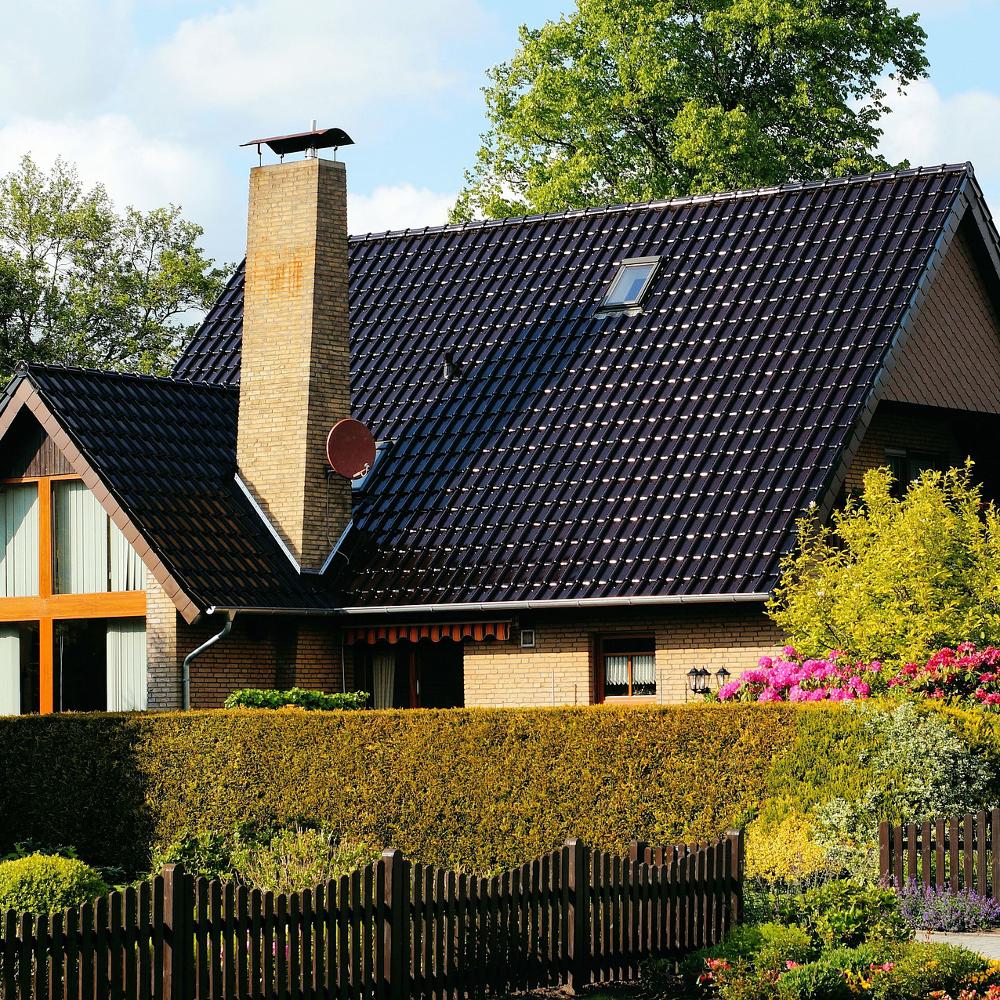 Heckenpflege gartenhecke richtig pflanzen und ganzj hrig pflegen bei westfalia versand deutschland - Ratgeber haus garten ...